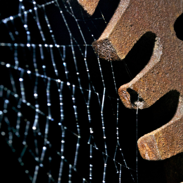 3. A spider web and a rusty wheel.