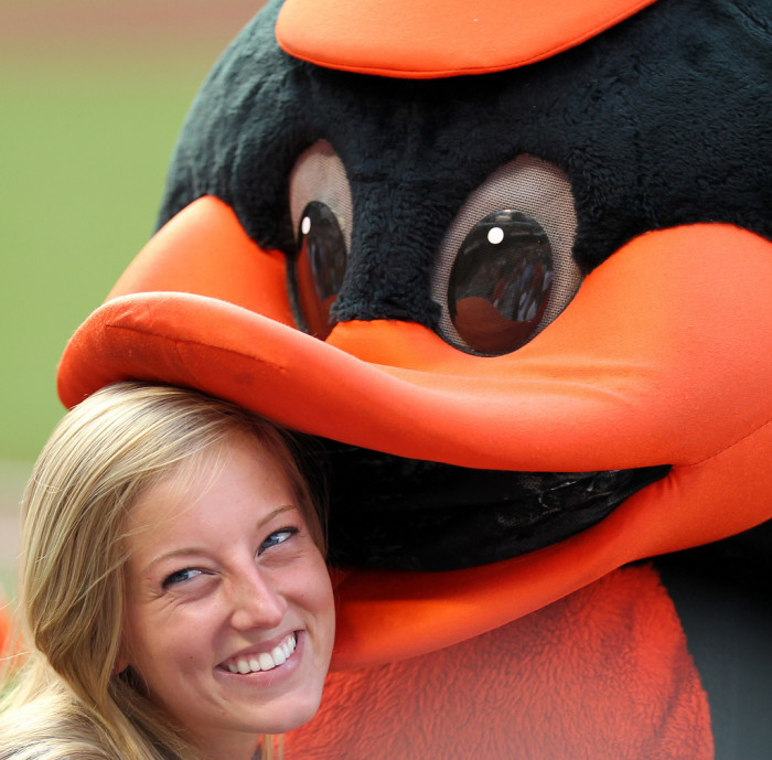 12) An up close and personal photo with the Baltimore Oriole.
