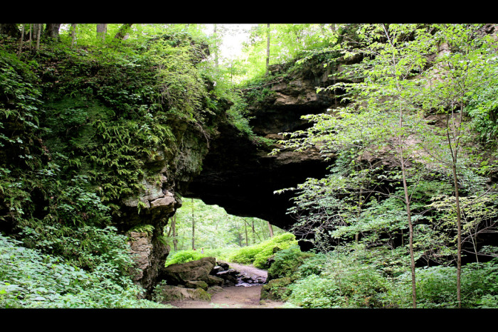Maquoketa Caves State Park is a 323-acre park in Jackson County that contains more caves than any other state park in Iowa. Atrail system throughout the park links the caves, formations, and overlooks while providing a scenichikingexperience like nothing else in Iowa.