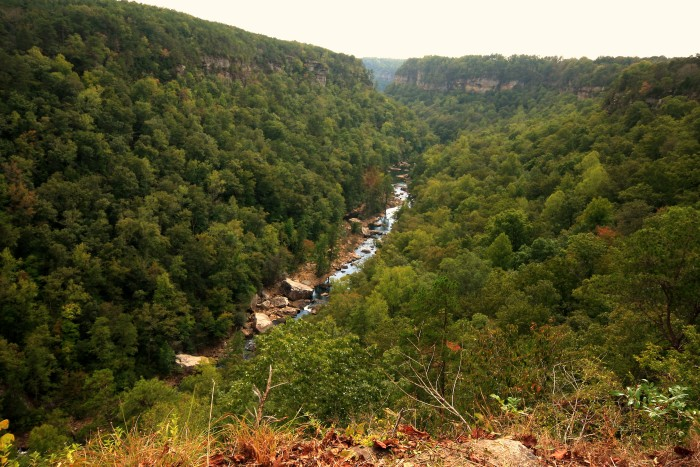 11. Little River Canyon National Preserve