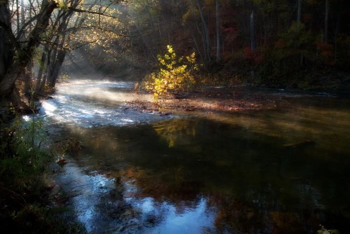 11. Early light shining on Cedar Creek