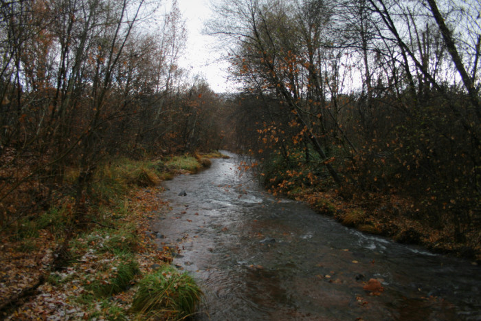 11. Oak Creek