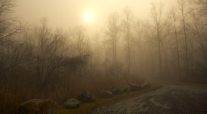 10 Eerie Shots In Connecticut That Are Spine-Tingling Yet Magical