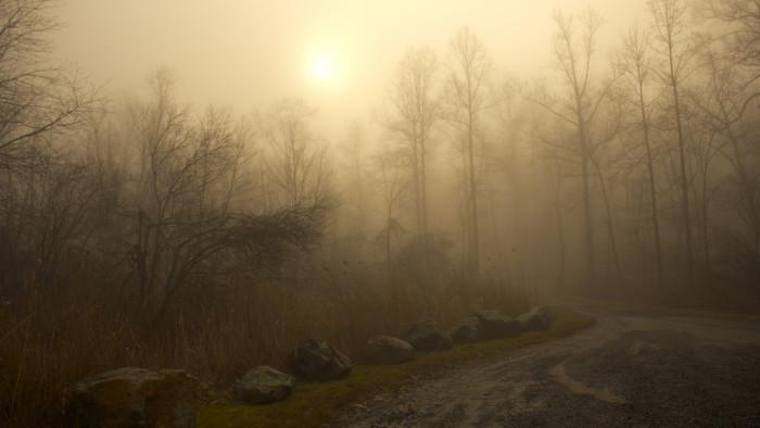 3. The sun breaks through an overcast morning.