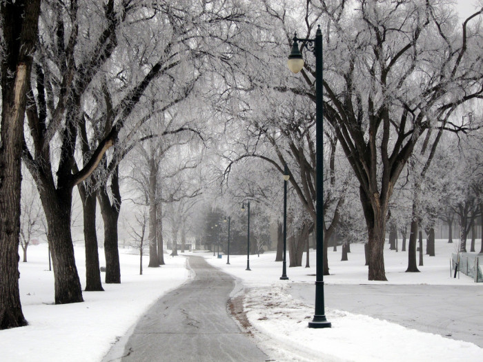 9. A chilly winter path in Fargo, ND.