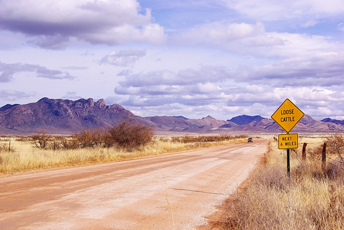4. You grew up learning to drive on roads like these:
