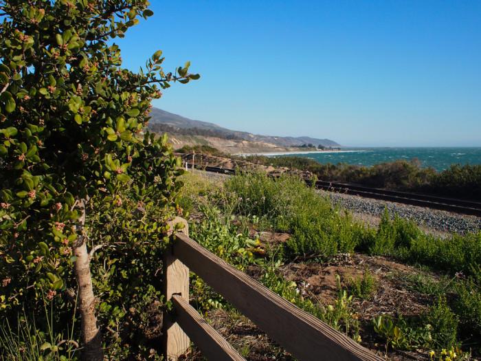 10. Carpinteria Bluffs Nature Preserve
