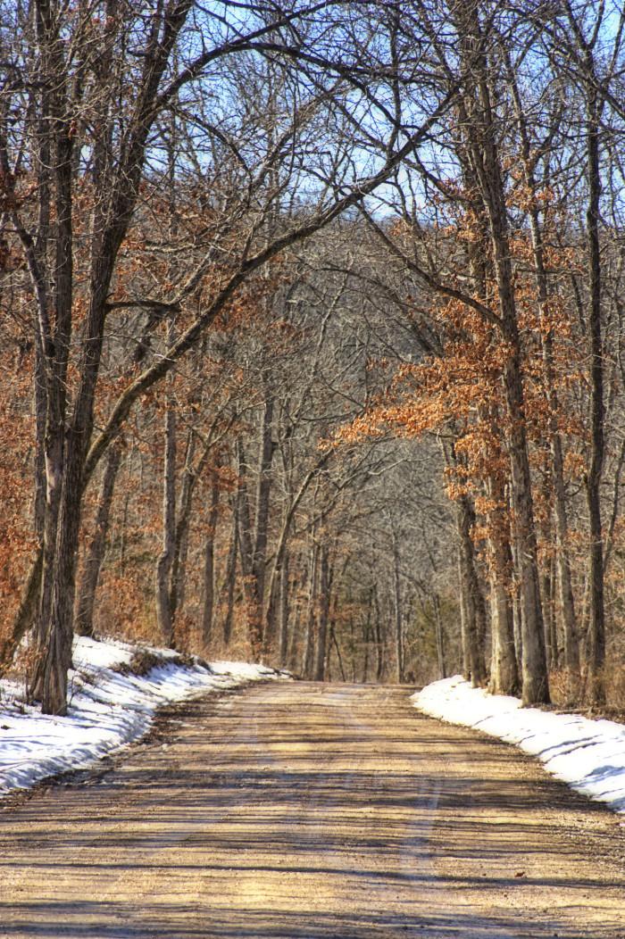 7.Dirt road in rural Missouri