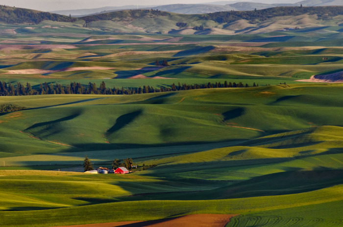 5. You can find complete solitude in a barn on the Palouse.