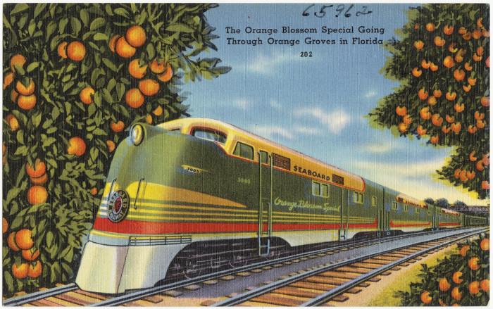 "3. ""The Orange Blossom Special Going Through Orange Groves in Florida"""