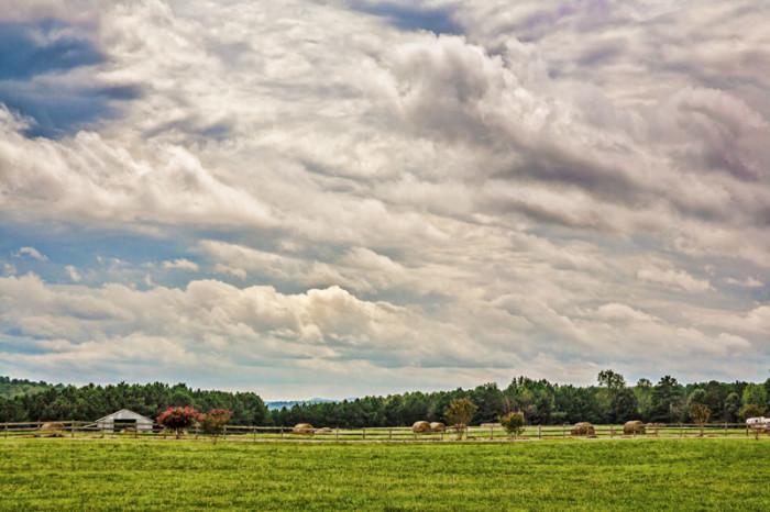 9. A scenic view of farmland in Springville, Alabama.