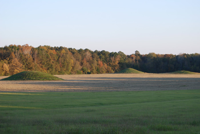 8. Located along the Natchez Trace, Pharr Mounds is the largest and most significant archeological site in northern Mississippi. The 90-acre site is comprised of eight large mounds, which were built and used from 100 – 1200 A.D. by a tribe of nomadic Indian hunters and gatherers.