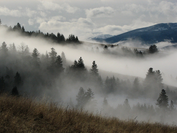 1. The Montana/Idaho border becomes a bit hazy when the fog rolls in.