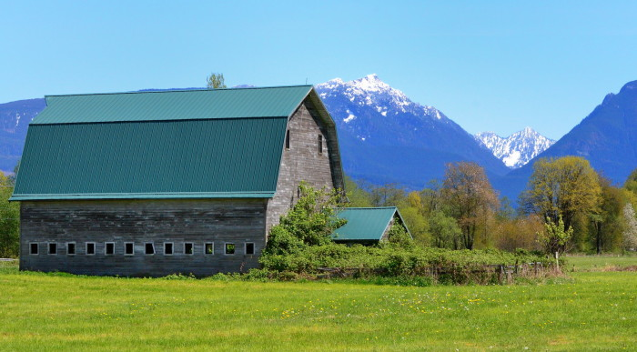 7. The vibrant grass and snow-capped peaks make this shot from Snohomish County so enchanting.