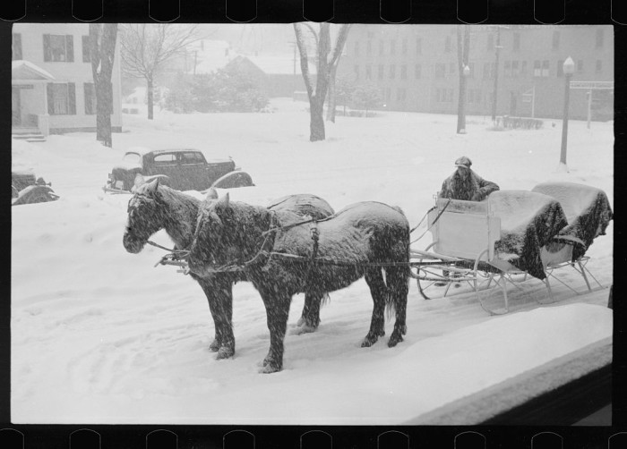 11. Horses wait in the snow in Lancaster.