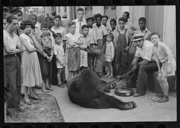 17 Rare Vintage Louisiana Photographs