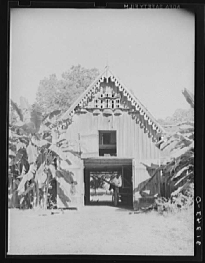 12. Pigeon cote on plantation barn near New Orleans