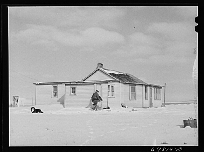 "10. ""Adams County, North Dakota. Mrs. Lee Johnson bringing in a pair of overalls which had been drying on the line and have been frozen stiff"""