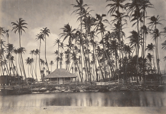 9. Photographed below is Kamehameha V's summer home at Helumoa, also known as The Royal Grove.