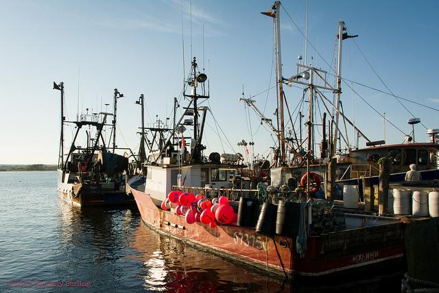 Harbors like Galilee and Wickford Village: