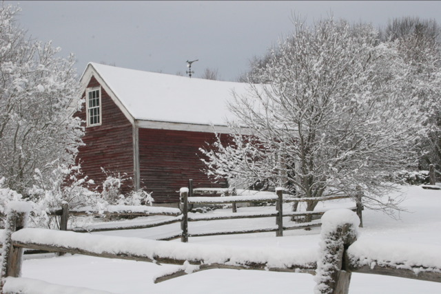 17. A red barn frosted with snow.