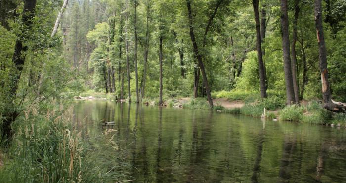 10. Arizona's natural beauty comes through its environmental diversity.