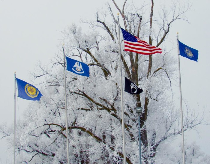 A frosty view of the flags at the Higgins Memorial in Columbus.