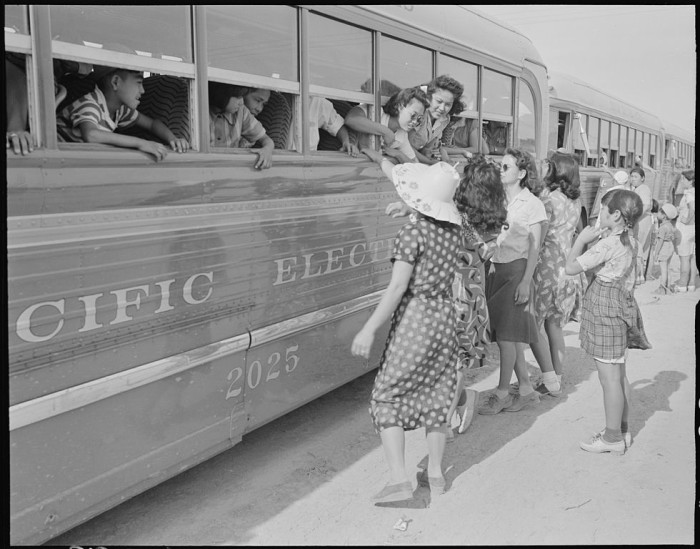 8. Bus loads of Japanese Americans arrive at the internment camp in Poston for processing in 1942.