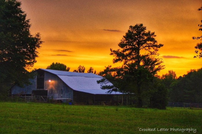 9. A picturesque farm is photographed in Lafayette County at sunset.