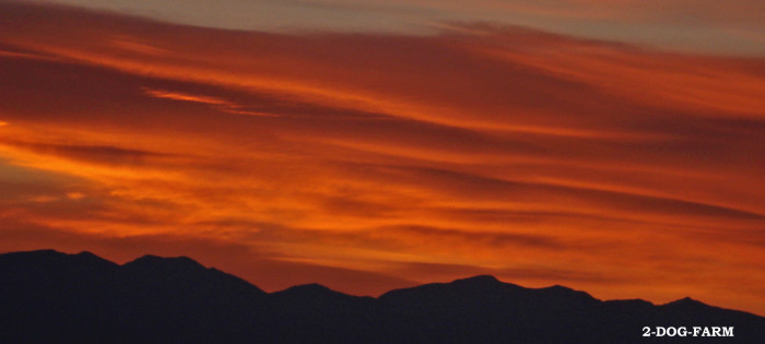 "3. ""A spooktacular Sunrise,"" Swan Range"
