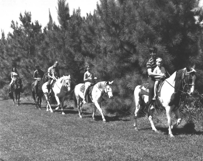 1. A bit of horseback riding in the south