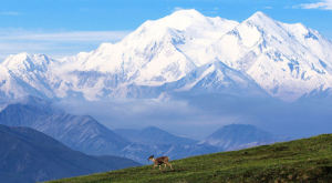 10 Reasons Why Alaska Is The BEST State
