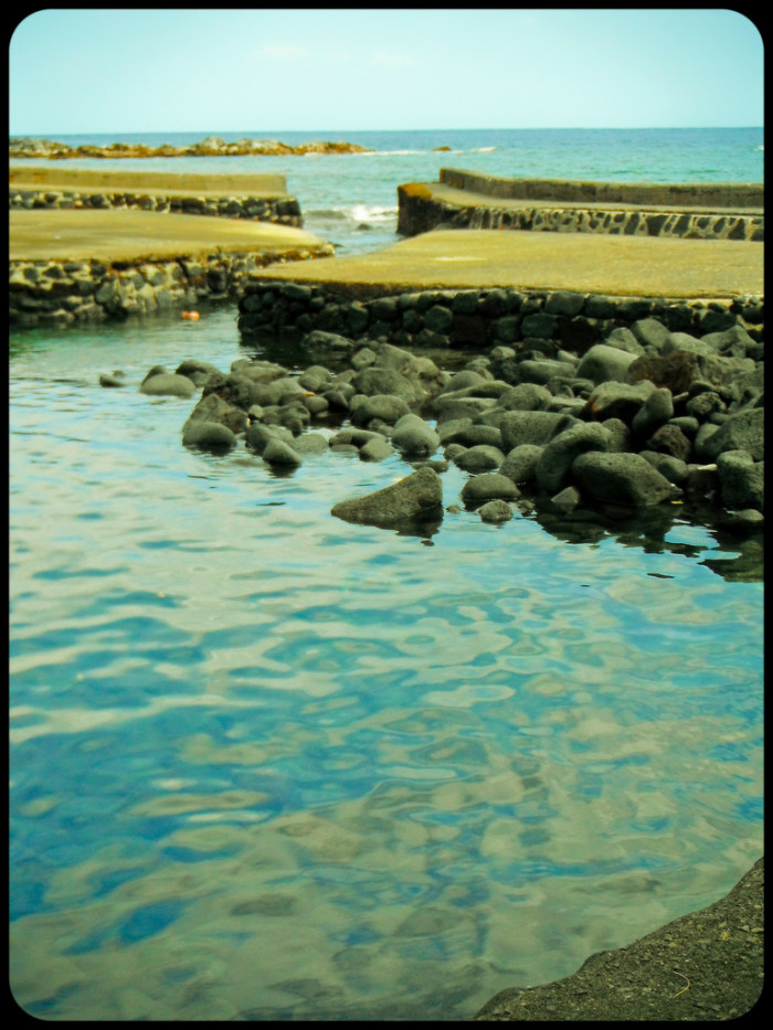 A small inlet separates the pool from the ocean, and allows fish to come and go as they please.