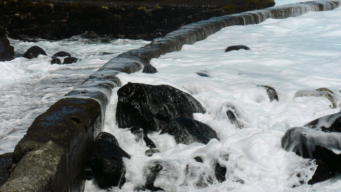 Although Ahalanui is not necessarily a tide pool, the water level does fluctuate with the ocean tide; waves from the Pacific actually clean the pool as they swell in and out, and during high tide, the water temperature drops as cooler water flows in.