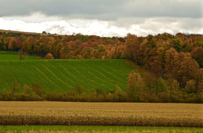 8. Incredible New York hills captured in the Mohawk Valley.