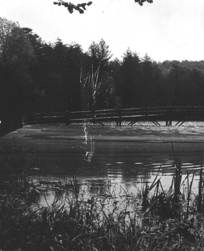 5. Byrd Lake in Crossville
