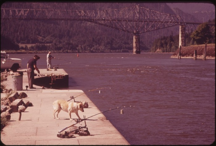 "3. ""Lazy Man Fishing"" at Cascade Locks on the Columbia River, 1973."