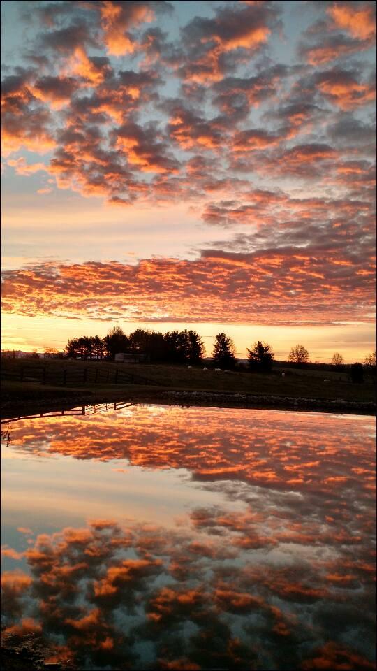 16. Reflections of Camargo