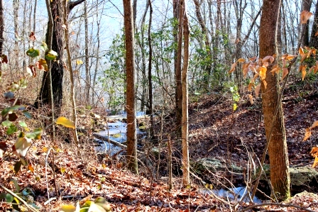 11) Chattanooga Nature Trails