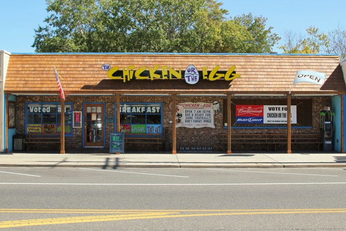 3. The Chicken or the Egg, Beach Haven