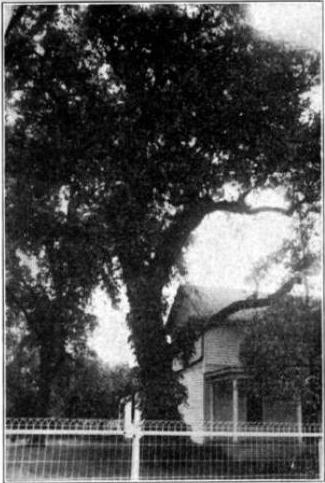 7. Council Grove Historic District (1912)