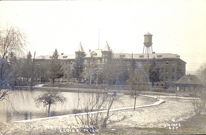 1. Eloise Asylum, Westland