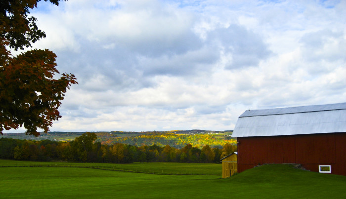 6. Pictured below, you can see a farm out near Keuka Lake, we love the red barn!