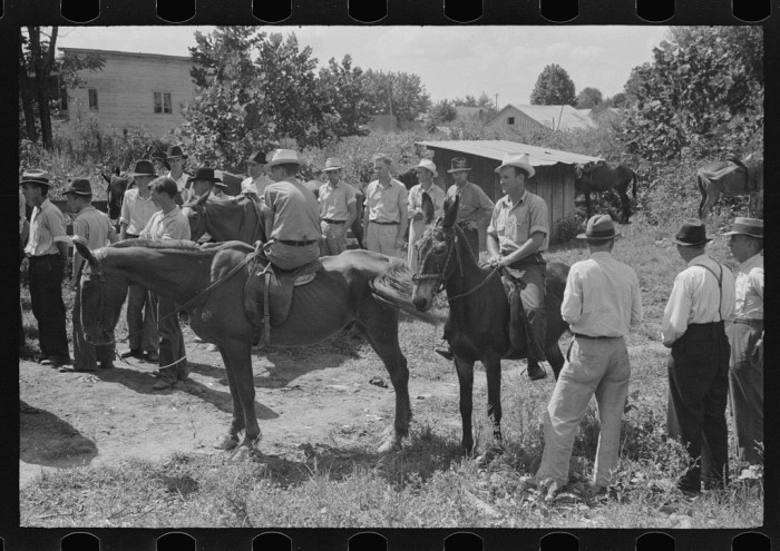 18. Farmers had a meeting spot they'd trade mules and horses.