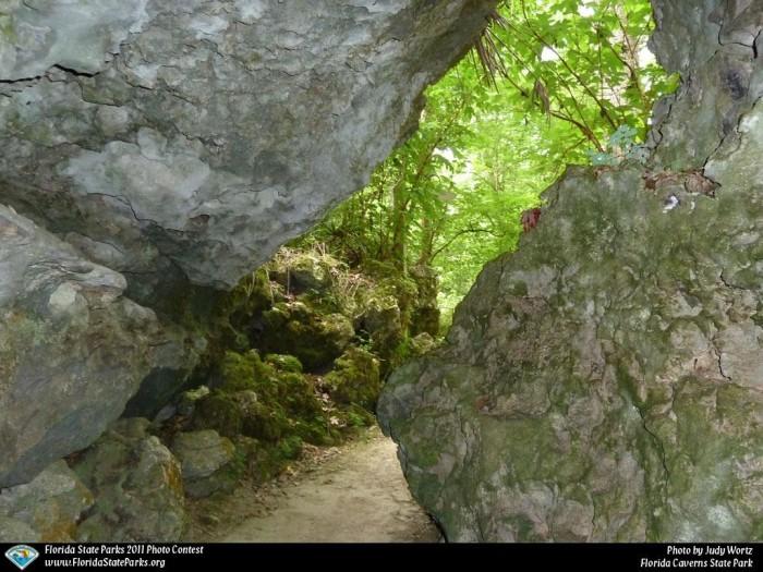 Florida-Caverns_contest_Judy-Wortz_Rock-pathway-to-caverns