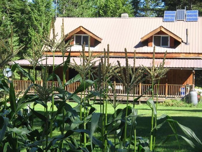 4. Huckleberry Tent and Breakfast, Clark Fork