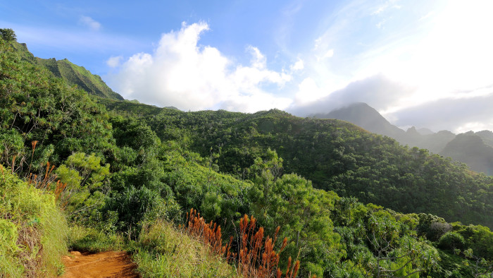The eleven-mile trail begins at Ke'e Beach and takes hikers on a journey along high, rugged cliffs, coastal valleys, and ending at the stunning Kalalau Valley.