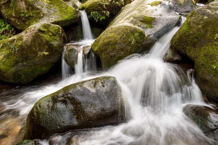 The trail also requires hikers to cross three streams that are known for water levels that can rise and fall rapidly, especially when it is raining. The streams do allow access to freshwater, though purification is still necessary.