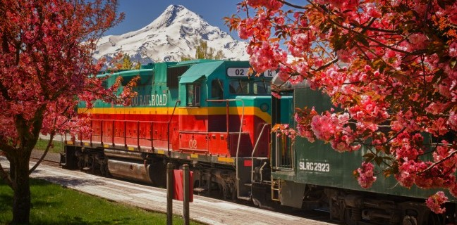 One great way to experience the mountain is by taking a scenic ride on the Mt Hood Railroad.