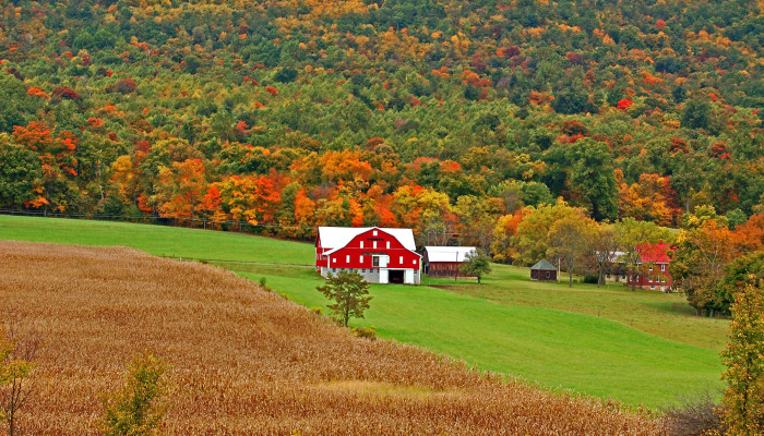 14. The photogenic countryside of the Empire State.